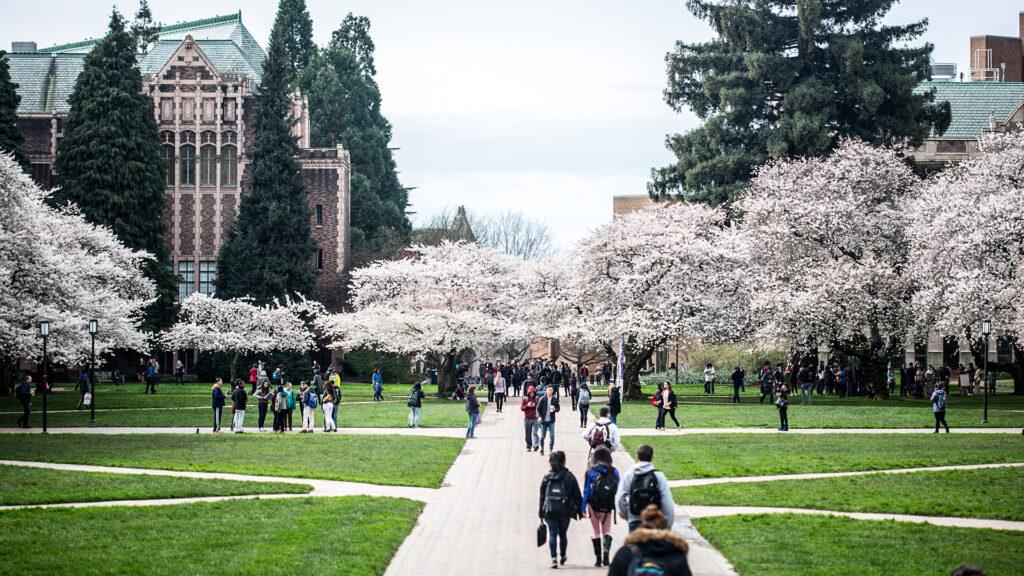 University of Washington (Main Campus)